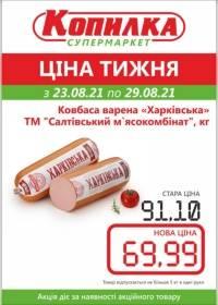 kopilka тисячі чотиреста один 2508